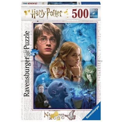 Bild av Harry Potter: Collage, 500 bitar
